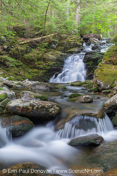 Gordon Falls on Snyder Brook in Randolph, New Hampshire during the summer months. This waterfall is located along the Fallsway Trail and is part of the Snyder Brook Scenic Area.