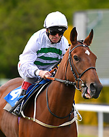 Quintada ridden by Franny Norton goes down to the start  of The Byerley Stud British EBF Fillies' Handicap during Afternoon Racing at Salisbury Racecourse on 16th May 2019