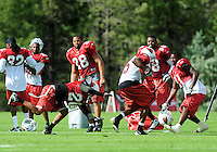 Jul 31, 2009; Flagstaff, AZ, USA; Arizona Cardinals wide receiver (15) Steve Breaston is pushed out of bounds by cornerback (20) Ralph Brown during training camp on the campus of Northern Arizona University. Mandatory Credit: Mark J. Rebilas-