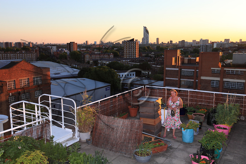 In Southwark, Nikki Vane's hives have an extraordinary view over the horizon of the city's financial district a stone's throw from the London Bridge. Nikki Vane is the secretary of the estimable London Beekeepers Association.able London Beekeepers Association.