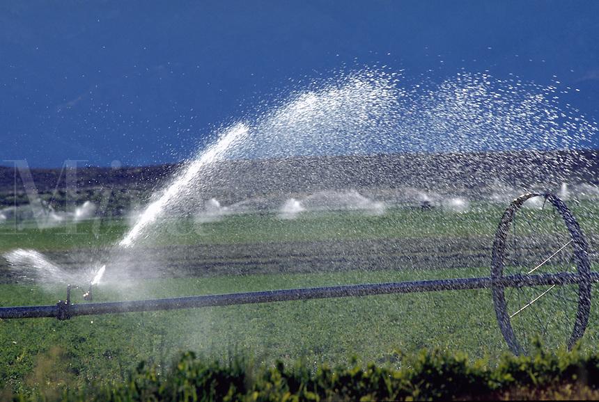 Irrigating a farm field