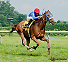 Top Partner winning at Delaware Park on 7/10/13