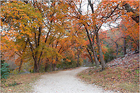 Texas Hill Country Images and Photos