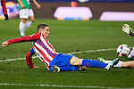 "Atletico de Madrid's Fernando Torres  during the match of ""Copa del Rey"" between Atletico de Madrid and Gijuelo CF at Vicente Calderon Stadium in Madrid, Spain. december 20, 2016. (ALTERPHOTOS/Rodrigo Jimenez)"