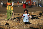 Norah Grant, 4, of Scotland, runs the maze at the Corley Ranch Harvest Festival in Gardnerville, Nev. on Saturday, Oct. 27, 2012. .Photo by Cathleen Allison