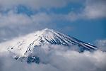 View of Mt. Fuji from Lake Kawaguchiko, Mt. Fuji, Japan