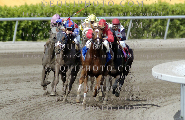 Corinthian, center, with Javier Castellano (red and gold silks) riding rounds the turn the of the $350,000  Gulfstream Park Handicap at Gulfstream Park. Photo By Matt Dean/EQUI-PHOTO