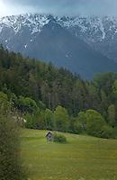 Cattle shelter,Imst district, Tyrol/Tirol, Austria, Alps.