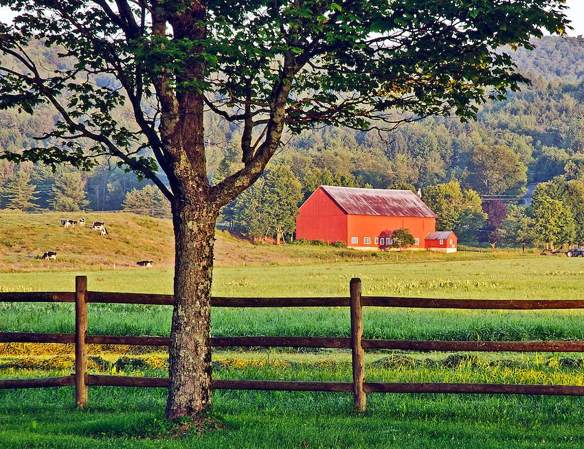Vermont Dairy Farm at Dawn