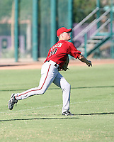 James Green - Arizona Diamondbacks - 2010 Instructional League.Photo by:  Bill Mitchell/Four Seam Images..