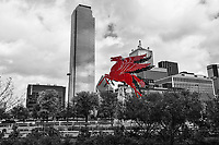 Dallas Downtown BW Red Pegasus - We capture this image with the Dallas downtown skyline in black and white with only the Pegasus in Red. The Pegasus has stood on top of the  Magnolia Petroleum Building or Magnolia hotel since 1934 till 1999 when it came down due to damage over the years and and was replaced with a new flying horse which sits on top of the Magnoila Hotel today.  However in 2011 a group of Dallas artist and entreprenuers reconditioned the orginal flying horse back to life and it was place on an oil derrick in front of the Omni Hotel in downtown Dallas.  Dallas pegasus have been a sense of pride for the people living here especially in the early 1940's through 1999 as it came to be a become that you were home once you saw it. When the Magnolia was built it was the tallest building in Dallas so you could see the Pegasus from quite a distance. Today it stand in from of the Omni Hotel with the down Dallas skyline including the bank of America plaza, Renaissance Tower, Fountain Place to name a few of the most iconic buildings in the city in this scene.