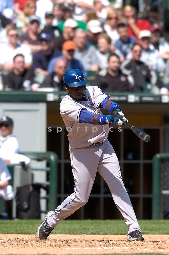 ANGEL BERROA, of the Kansas City Royals, during their game against the Chicago White Sox...CHRIS BERNACCHI/ SPORTPICS