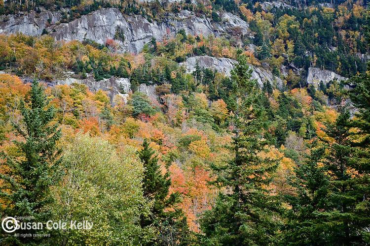 Autumn, Moose Cave Cliffs, Grafton Notch State Park, ME