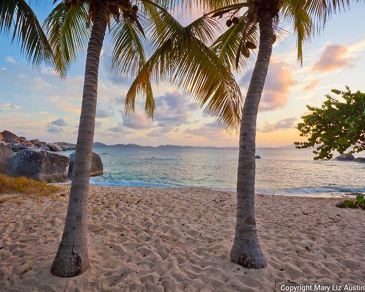 Virgin Gorda, British Virgin Islands, Caribbean <br /> Twp palm trees on a quiet beach on Spring Bay at sunset, Spring Bay National Park