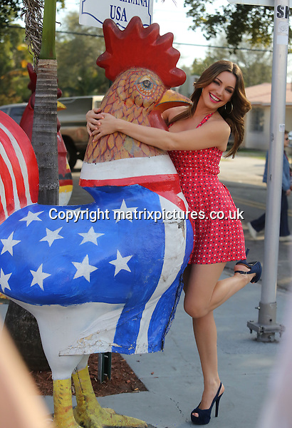 NON EXCLUSIVE PICTURE: MATRIXPICTURES.CO.UK.PLEASE CREDIT ALL USES..UK, AUSTRALIA, NEW ZEALAND AND ASIA RIGHTS ONLY..English model and media personality Kelly Brook is pictured wearing a red and white polka dot summer dress and posing with a big cockerel, whilst shooting on location for a new commercial in Little Havana, Miami today...The newly single beauty appears to have thrown herself into her work following her recent split from boyfriend Scottish rugby player Thom Evans...FEBRUARY 3rd 2013..REF: KDA 13719..XIM