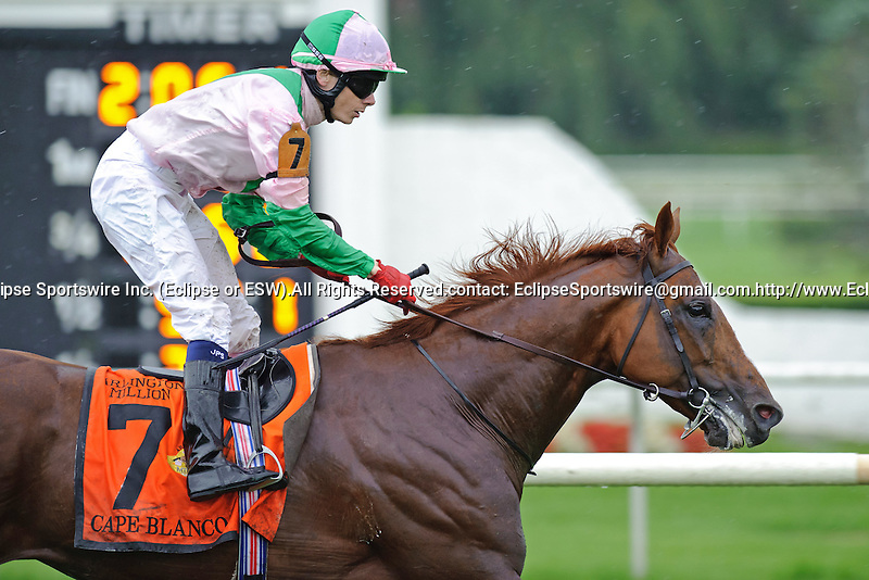 Jamie Spencer  aboard Cape Blanco wins  The Arlington Million Stakes on Arlington Million Day at  Arlington Park in Arlington Heights, IL  on 8/13/11. Trained by Aidan P. O'Brien (Ryan Lasek / Eclipse Sportwire)