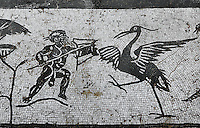 Detail of mosaic in the House of Neptune, Italica, Seville, Spain, pictured on December 28, 2006, in the morning. The mosaic depicts a hunter with a large wading bird. Italica was founded by Scipio Africanus in 206 BC as a centre for soldiers wounded in the Battle of Ilipa, a defeat for Carthage during the Punic Wars, and became a military outpost. The name signifies that the original settlers were from an Italian regiment. It was one of the first cities in Roman Hispania and was the birthplace of two Roman Emperors: Trajan (53-117 AD) and Hadrian (76-138 AD). The House of Neptune is named for its central mosiac showing the God of the Sea with his trident surrounded by sea creatures. The city declined after the fall of the Roman Empire. Picture by Manuel Cohen.