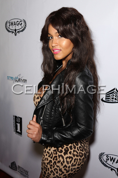 ROSA ACOSTA. Attendees to Souljah Boy Red Carpet Birthday Bash and Performance, sponsored by Swaggmedia.com, at the Highlands. Hollywood, CA, USA. July 28, 2010.