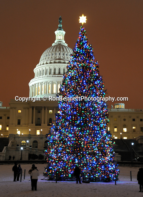 Christmas trees with United States Capitol Washington DC, Greetings with Red white blue green lights on Christmas trees with United States Capitol in background Washington D.C., Christmas tree, lights and people enjoy Christmas tree with United States Capitol in background Washington D.C., Washington DC at Christmas, Washington, D.C Washington DC at Christmas, Washington, D.C. fine art photography by Ron Bennett ©. Copyright, Washington DC, District, DC, capital, Potomac River, Washington Metropolitan, metropolitan area, federal district, federal government of USA, US Congress, White House, National Mall, Politics in the United States, Presidential, Federal Republic, united States Congress, powers, Judicial Power, House of Representatives, US Senate, Constitution, federal law, Democratic Party, Republican party, two party system, Photography history, Stock Photography, Fine Art Photography, Ron Bennett Photography, Ronald T. Bennett Photography, Ron Bennett Photographer, Fine Art Photography by Ron Bennett, Fine Art, Fine Art photo, Art Photography,