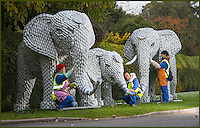 BNPS.co.uk (01202 558833)<br /> Pic: Longleat/BNPS<br /> <br /> Finishing touches are added to a family of life size porcelain elephants.<br /> <br /> A team of highly skilled artisans from Zigong in China's Sichuan province are hard at work producing thousands of illuminated lanterns for the Longleat Festival of light this autumn.<br /> <br /> The annual event is the largest ever staged in the UK, and features over 30,000 lightbulbs, 20km of silk and 4km of LED's, along with a 20 metre tall cake and life size porcelain elephants.