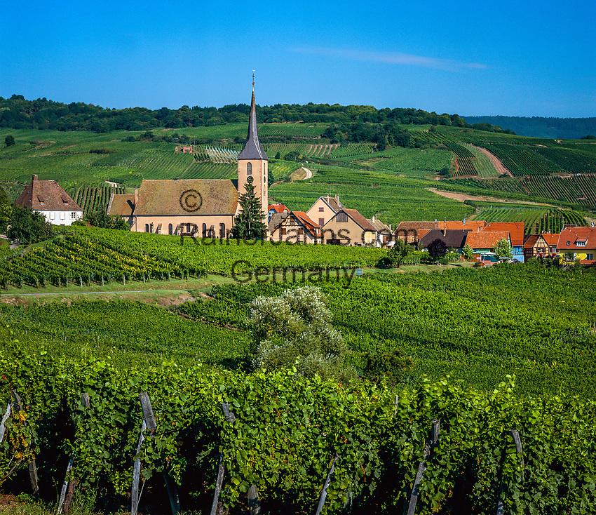 France, Alsace, Department Bas-Rhin, Blienschwiller: wine village at Route des vins d'Alsace | Frankreich, Elsass, Départements Bas-Rhin, Blienschwiller: Weinort an der Elsaessischen Weinstrasse
