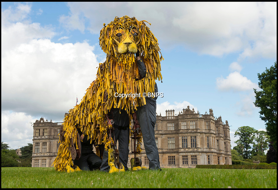 BNPS.co.uk (01202 558833)<br /> Pic: IanTurner/BNPS<br /> <br /> The War Horse puppeteers have turned their hand to the famous Lions of Longleat in their latest creation.<br /> <br /> The three metre long work of art has been made to celebrate the Longleat Safari Park's 50th anniversary. <br /> <br /> The puppet was crafted by Jimmy Grimes, the puppetry director for War Horse, and David Cauchi, a puppet designer.