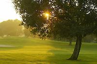 111604_GolfCourse
