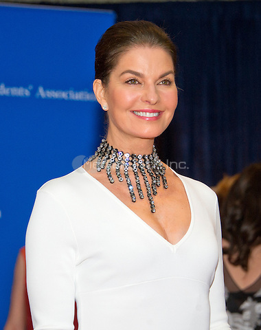 Sela Ward arrives for the 2016 White House Correspondents Association Annual Dinner at the Washington Hilton Hotel on Saturday, April 30, 2016.<br /> Credit: Ron Sachs / CNP<br /> (RESTRICTION: NO New York or New Jersey Newspapers or newspapers within a 75 mile radius of New York City)/MediaPunch