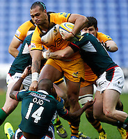 Irish v Wasps 20131130