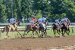 August 15, 2020:  Domestic Spending #4 ridden by Irad Ortiz Jr. trained by c.c. Brown wins the The Saratoga Derby Invivtaional at Saratoga Race Course in Saratoga Springs, New York. Rob Simmons/CSM