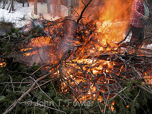 Brush fire burning spring clean up forest trees