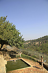 Ein Sajma in Gush Etzion