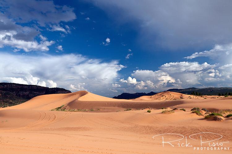 Sand Dunes at Utah's Coral Pink Sand Dunes State Park near Kanab.