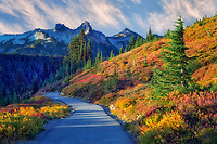 Fall color and sunrise with path in Mt. Rainier National Park with view of Tatoosh Mountains. Washington