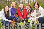 Enjoying the sponsored walk in aid of Animal Haven which started at Ross Castle on Sunday were Denise Golden, MarieO'Connor, Louise O'Connor, Elaine O'Sullivan and Judy Golden, Killorglin.