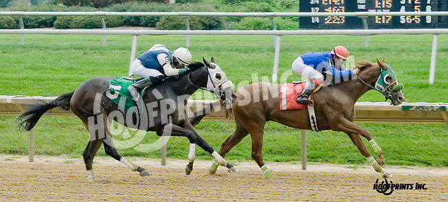 If I Win Thelotto winning at Delaware Park on 8/20/14