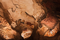 Europe/France/Aquitaine/24/Dordogne/Périgord Noir/Montignac: Grotte de Lascaux II - Grottes ornée  paléolithique  [Non destiné à un usage publicitaire - Not intended for an advertising use]