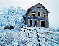 Abandoned farmhouse with hoar frost. Near Maupin, Oregon.