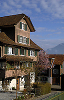 Beckenreid homes with snowcapped mountains in the background, Beckenreid, Luzern area, Switzerland.