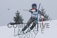 2017 Section 6 Alpine Ski Meet - AM Run
