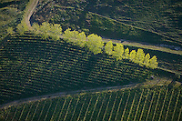 aerial photograph vineyards Mayacamas Mountains Sonoma Valley Sonoma County, California