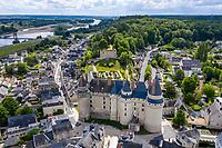 France, Indre-et-Loire, Langeais, château et jardin de langeais et la Loire (vue aérienne)