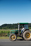 USA, California, Healdsburg, on the grounds of Vines Nalle Vineyard, a family owned and operated winery in Sonoma County