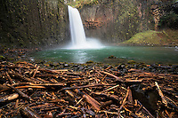 Abiqua Falls with driftwood. Oregon