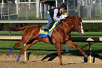 LOUISVILLE, KY -JUN 04: Kentucky Derby and Preakness winner Justify, ridden by Martin Garcia, breezes 5 furliongs in 1:01.40 at Churchill Downs, Louisville, Kentucky, in preparation for the June 9 Belmont Stakes in New York. (Photo by Mary M. Meek/Eclipse Sportswire/Getty Images)
