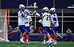 FOXBORO, MA - MAY 28: The Limestone Saints react to scoring a goal against the Merrimack Warriors the  during the Division II Men's Lacrosse Championship held at Gillette Stadium on May 28, 2017 in Foxboro, Massachusetts. (Photo by Larry French/NCAA Photos via Getty Images)