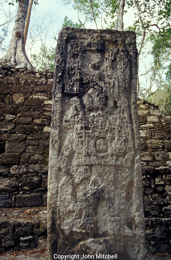 Stela 29 showing Ruler 2 at at the Mayan ruins of Calakmul, Campeche, Mexico. Calakmul is located in the 7,231.85 square km Calakmul Biosphere Reserve, which was established in 1989. Calakmul was made a UNESCO World Heritage Site in 2002.