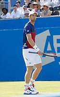 JUN 20 Aegon Championship 2017 - Andy Murray VS Jordan Thompson