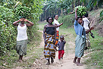 Women Carrying Bananas