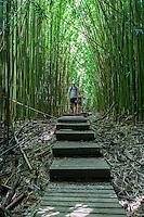 A couple hiking in a thick bamboo forest along the Pipiwai hiking trail, Haleakala National Park, Kipahulu, Maui